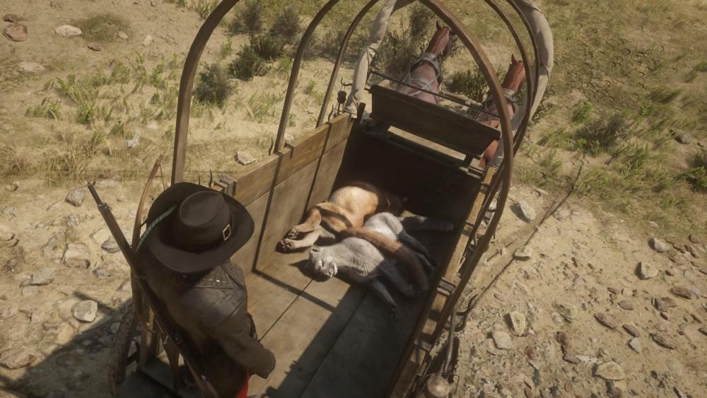 Red Dead Redemption 2_20190622150438.jpg